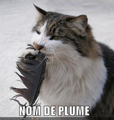 Interwebz Cat Haz A Nom De Plume