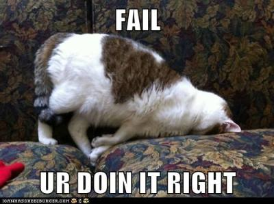 "Lolcat: ""Fail - u r doin it right"""