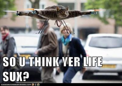 "LOLcat/Catcopter: ""So u think yer life sux?"""